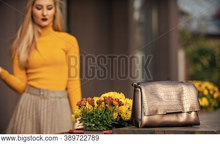 Comfy Format. Fashionable Female Accessory. Bronze Handbag Clutch For Woman. Luxury Leather Purse. S
