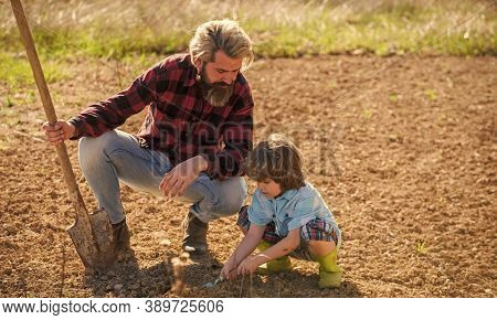 Dad With Shovel And Boy Digging Soil. Where Food Comes From. Teaching Son Growing Plants. Planting P