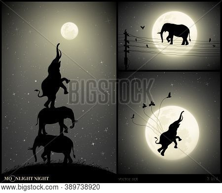 Elephants Reach For Full Moon On Moonlight Night. Abstract Silhouette Of Big Animal On Electrical Wi
