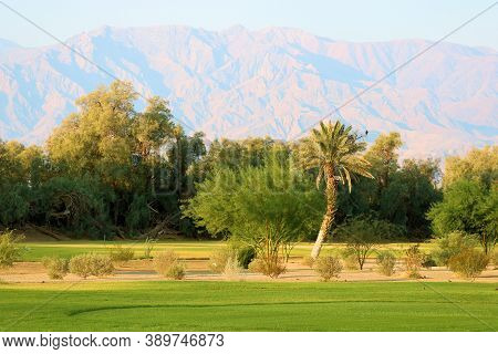 Manicured Grass Besides Cacti Gardens With Barren Mountains Beyond Taken On A Golf Course Taken At F