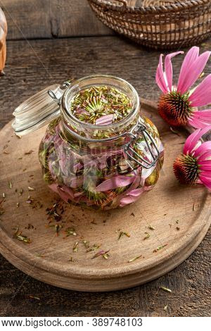 Preparation Of Herbal Tincture From Fresh Echinacea Flowers In A Glass Jar