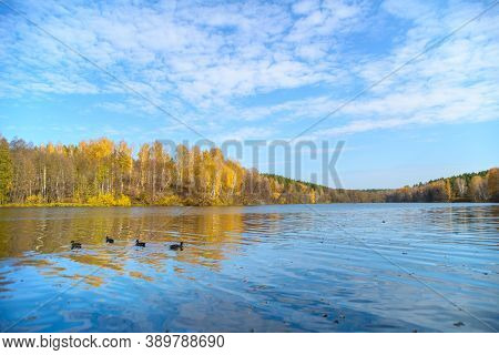 Beautiful Autumn Landscape With Clear Blue Lake And Yellow Autumn Trees.