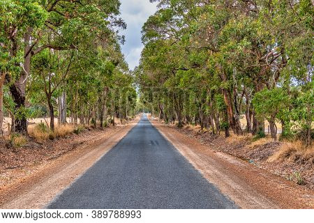Australian Country Road In Wa Perth Australia