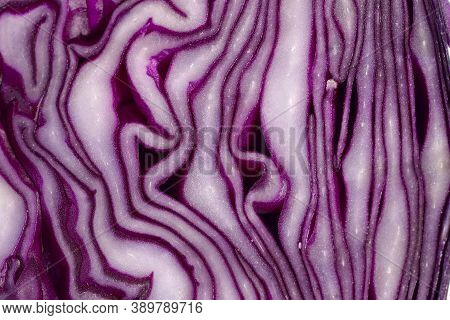 Abstract Natural Background.beautiful Slice Of Red Cabbage. Natural Textured Purple Background.