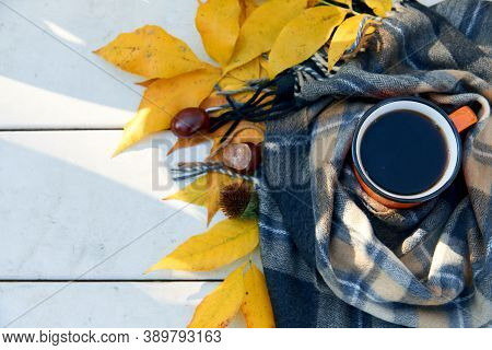 Cup Of Tea And Warm Scarf On White Wooden Bench, Picnic In The Autumn Park. Fall Season, Weekend, Te