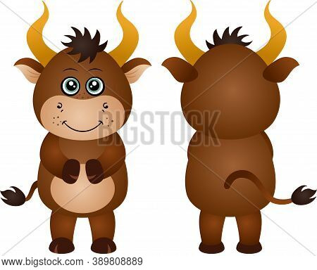 Scalable Vectorial Representing A Friendly Ox Front And Rear View, Element For Design, Illustration