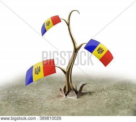 3d Illustration. 3d Sprout With Moldavian Flag On White
