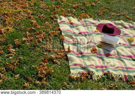 Checked White Blanket With Fringes, Red Fedora, Open Book On Green Grass With Yellow Fallen Leaves.