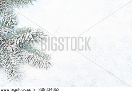 Spruce Branch In The Snow On A White Snow-covered Background With A Place For Copyspace Text. New Ye