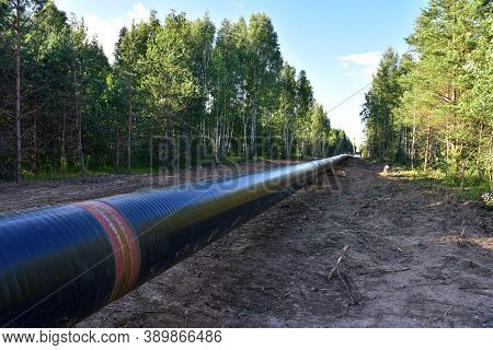 Natural Gas Pipeline Construction Work In Forest Area. Installation Of Gas And Crude Oil Pipes In Gr