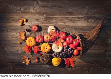 Thanksgiving cornucopia filled with pumpkins, apples, grapes and leaves on a rustic wooden background