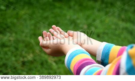 Closeup Of Wet Hands Of Toddler Girl In Striped Sleeve Shirt. Kid Plays In Drizzle Catching Droplets