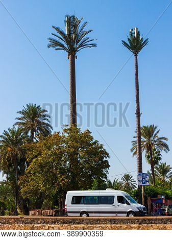 Marrakesh, Morocco - 16 October, 2019: Telecommunication Towers Disguised As A Date Palm Trees. Mobi