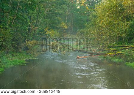 Morning Autumn Mist Rising Over A Small River.\nautumn Morning. A Small, Unregulated, Wild River Flo