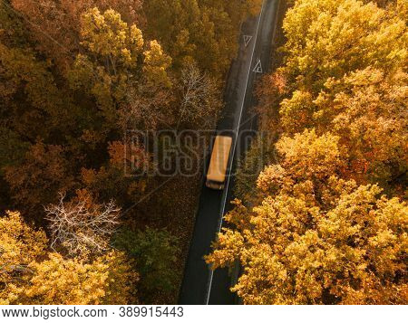 Aerial view of road with school bus in beautiful autumn forest at sunset. aerial, drone view