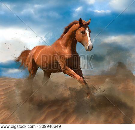 Beautiful Horse Kicking Up Dust While Running Through Desert