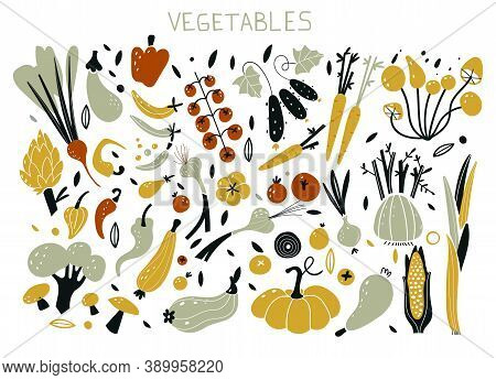 Vector Illustrations Of Autumn Objects. Set With Hand Drawn Colorful Doodle Fruits And Vegetables. S