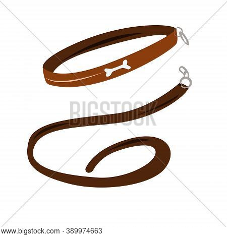 Collar And Leash On A White Background