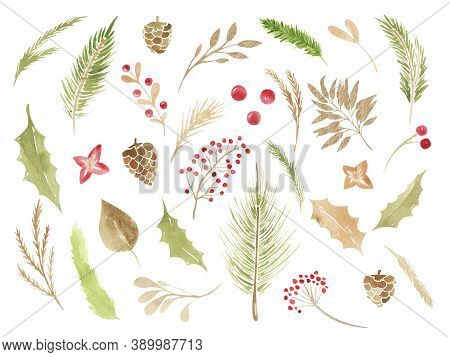 Christmas Boho Clipart. Watercolor Winter Floral Set Holiday Branches, Leaves, Cones, Berries, Conif