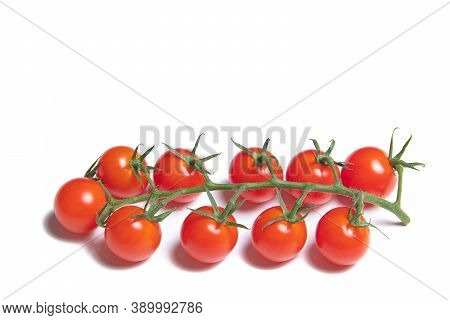 Cherry Tomatoes Branch Isolated On White Background . Red Tomato. Tomatoes On A Branch. Isolated Bac