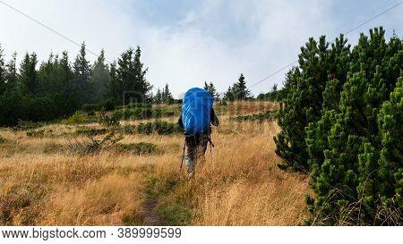 Tourist With Large Blue Backpack Walking In A Mountain Meadow, Low Tatras, Nizke Tatry, Slovakia.