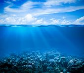 Underwater coral reef seabed view with horizon and water surface split by waterline poster