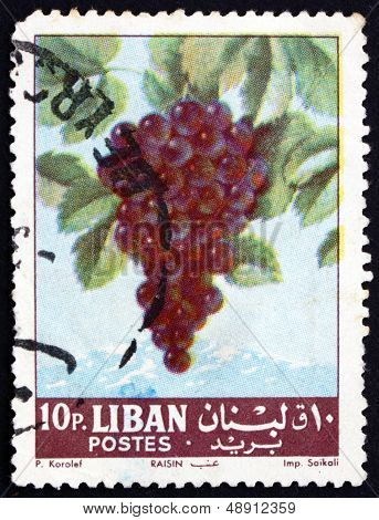 Postage Stamp Lebanon 1962 Grapes, Fruiting Berry