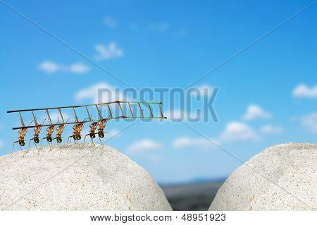 Ants Building