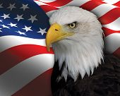 Photo of a Bald Eagle imposed of the top of a US Flag. poster