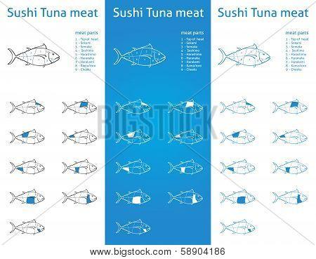 Tuna meat cut