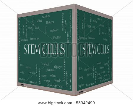 Stem Cells Word Cloud Concept On A 3D Cube Blackboard