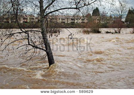 Überschwemmungen River