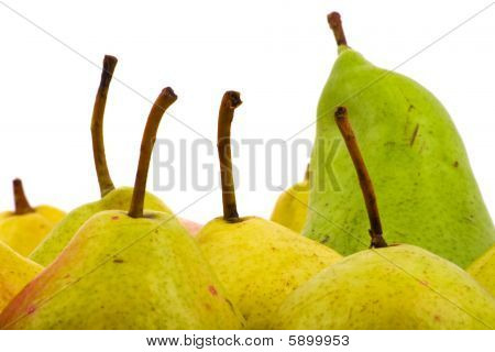 Pears Closeup On White Background