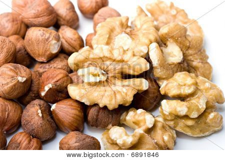 Walnuts and filberts hazelnut nutricious food close up