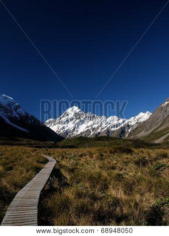 Mt Cook Path