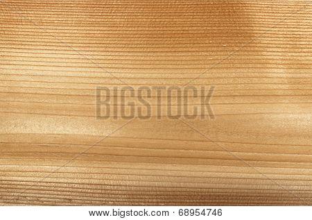 Macro closeup of natural red cedar wood plank woodgrain texture poster