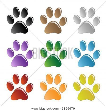 Illustration paw prints dogs in different colors. poster