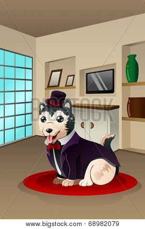 A vector illustration of cute dog dressed up in a fancy outfit at a home environment poster