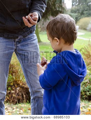 Father And Child Son In Autumn Park