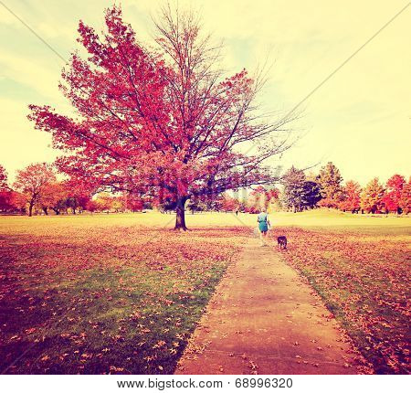 a woman walking with her pit bull in a park on an autumn day toned with a retro vintage instagram filter  poster