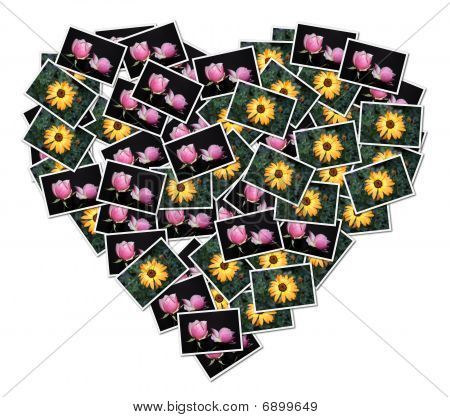Heart-shaped Collage