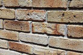 Sandstock brick wall