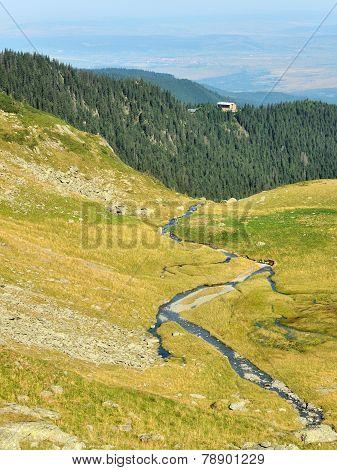 Sarata Creek ZigZag