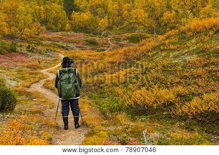 Autumnal hiker