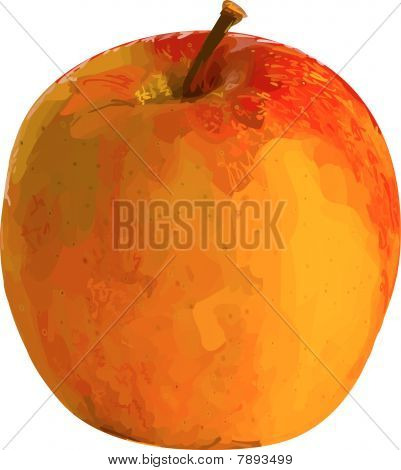 Vector illustration apple