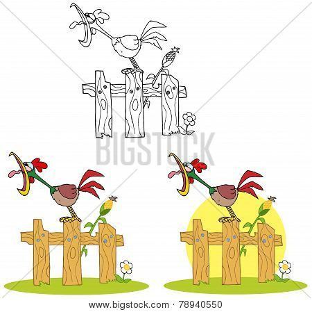 Rooster Character Crowing Stepped On The Fence. Collection Set
