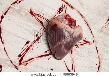 Dark Bloody Sacramental With Victim