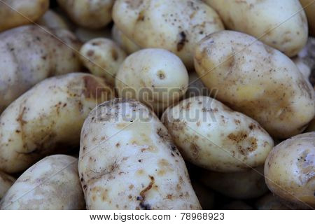 Potatoes at market