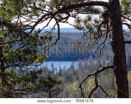 View Of Boundary Waters Lakes With Pine In Foreground