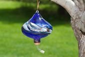 Hand Blown Glass Hummingbird Feeder hanging from a tree. poster